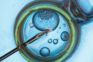 Cum arată viitorul FIV, în care inteligența artificială și celulele stem vor învinge infertilitatea